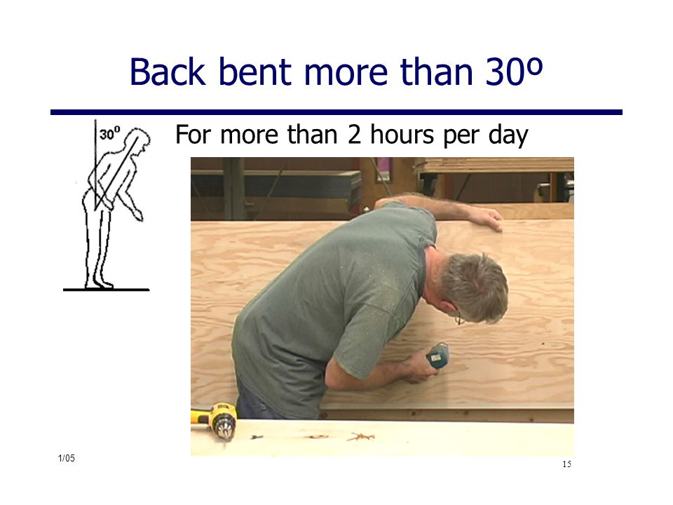 Back bent more than 30º For more than 2 hours per day