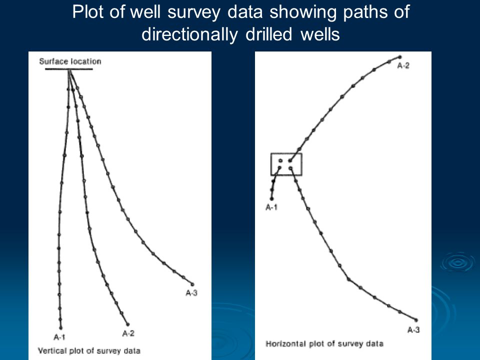 Plot of well survey data showing paths of directionally drilled wells