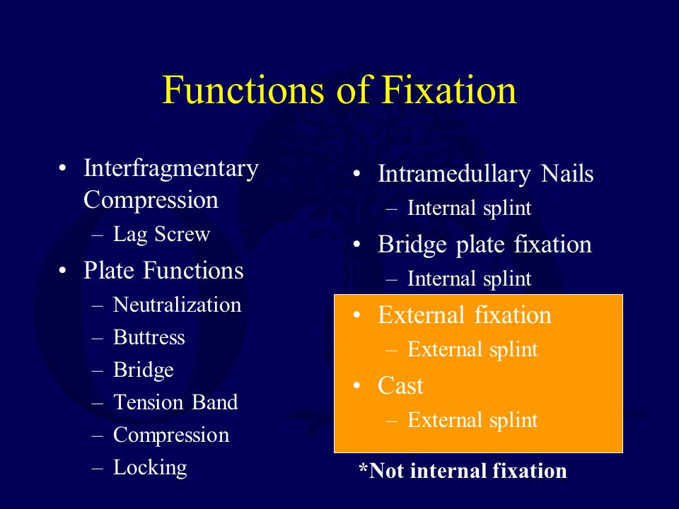 Functions of Fixation Interfragmentary Compression