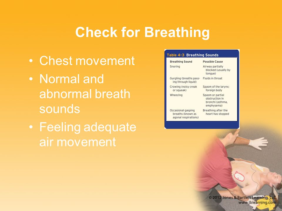Check for Breathing Chest movement Normal and abnormal breath sounds