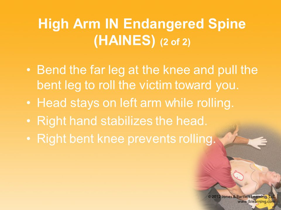 High Arm IN Endangered Spine (HAINES) (2 of 2)