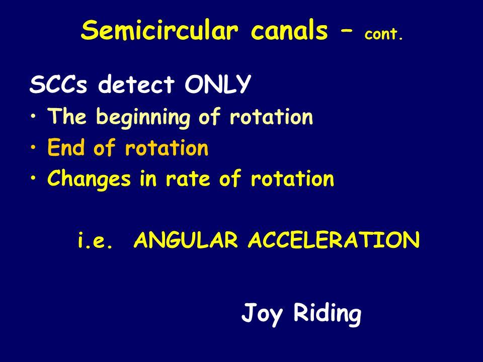 Semicircular canals – cont.