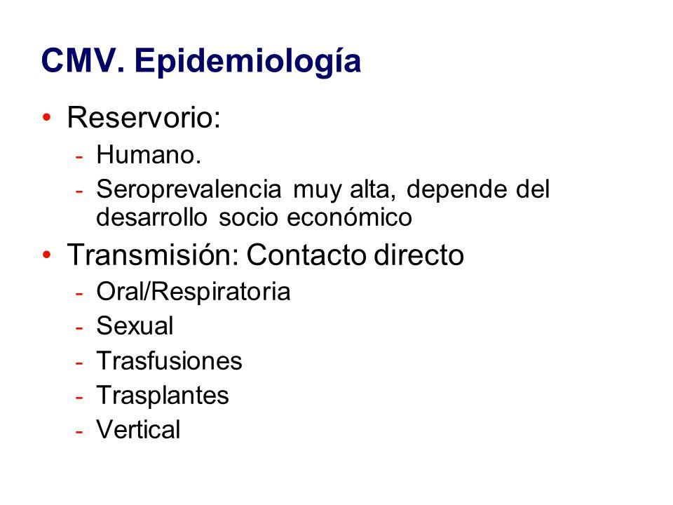 CMV. Epidemiología Reservorio: Transmisión: Contacto directo Humano.