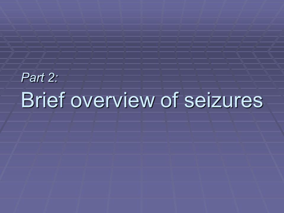 Part 2: Brief overview of seizures