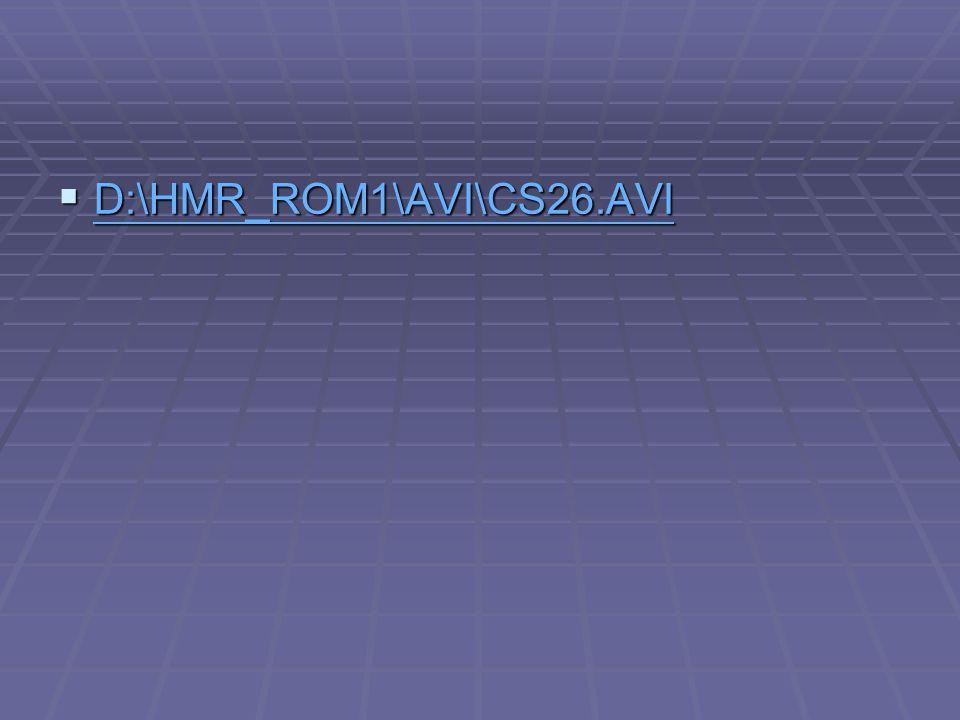 D:\HMR_ROM1\AVI\CS26.AVI