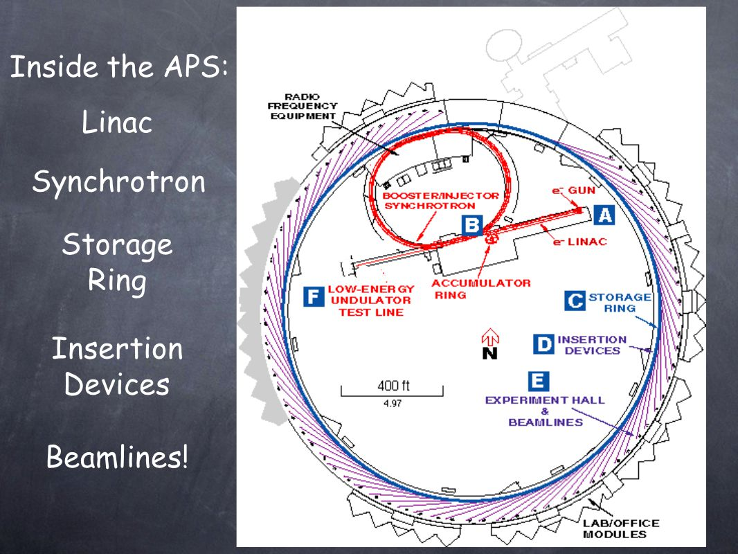 Inside the APS: Linac Synchrotron Storage Ring Text Text Insertion Devices Beamlines!
