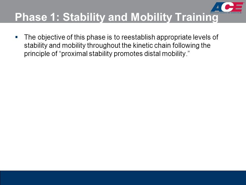 Phase 1: Stability and Mobility Training