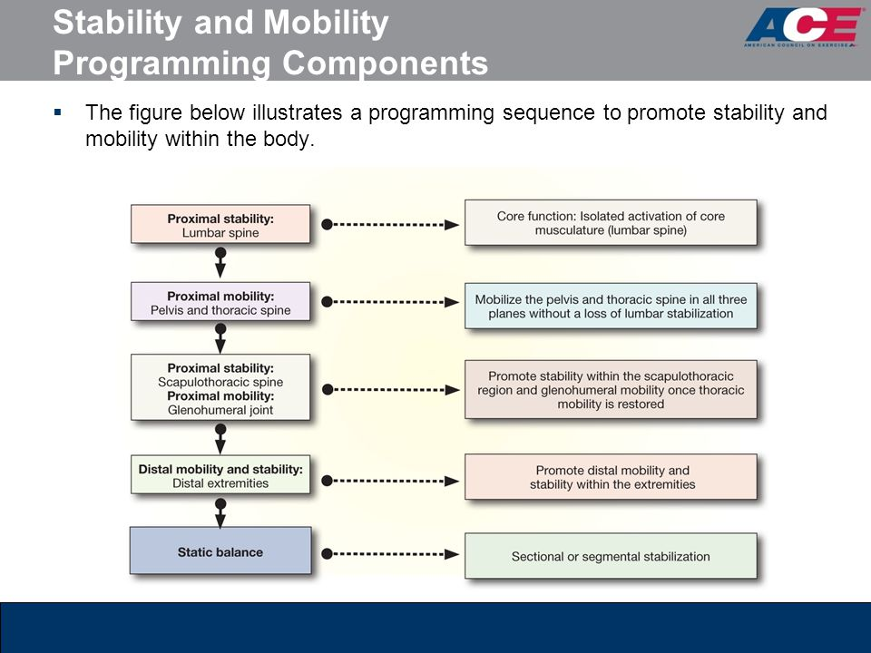 Stability and Mobility Programming Components