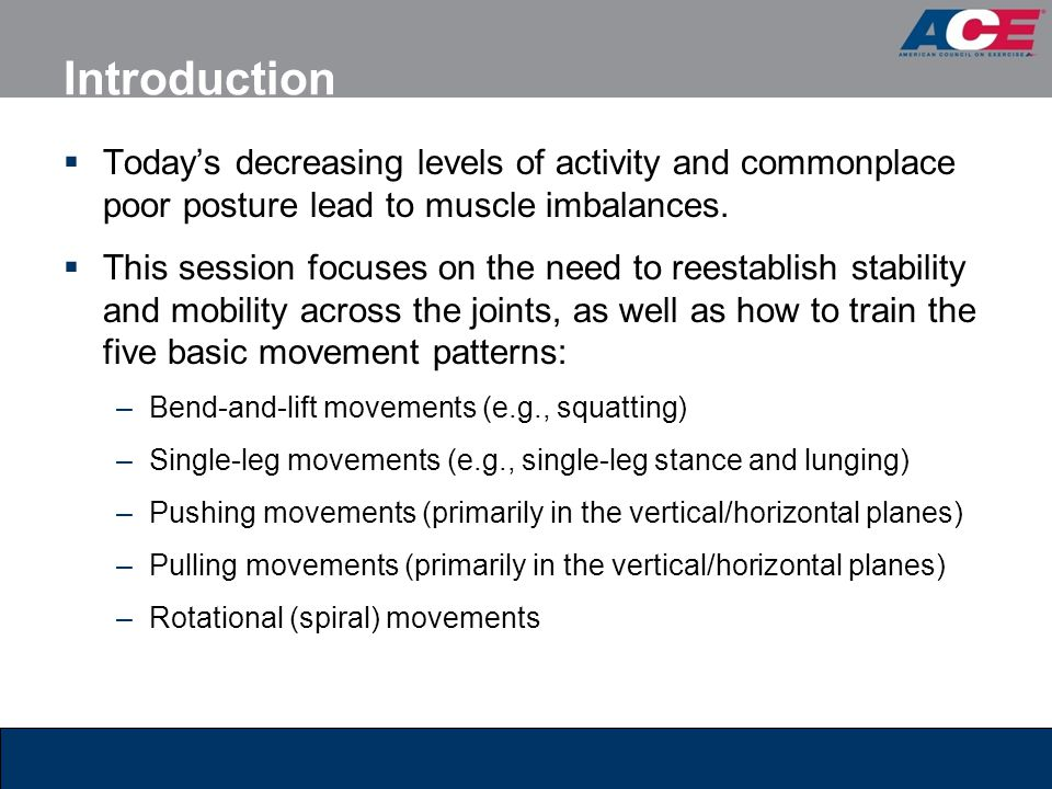 Introduction Today's decreasing levels of activity and commonplace poor posture lead to muscle imbalances.