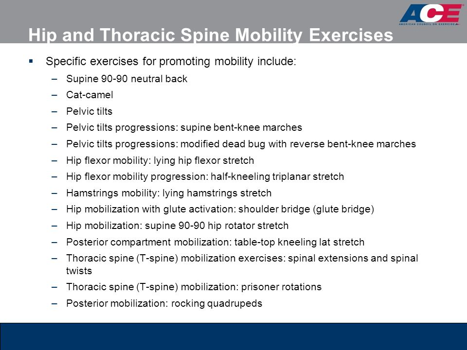 Hip and Thoracic Spine Mobility Exercises