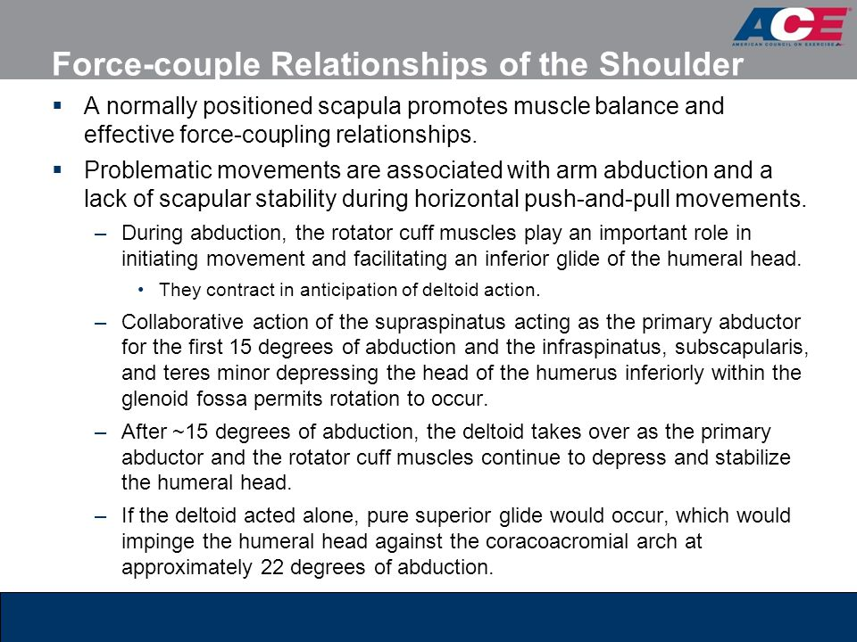 Force-couple Relationships of the Shoulder