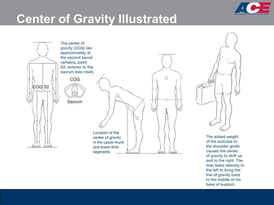 Center of Gravity Illustrated