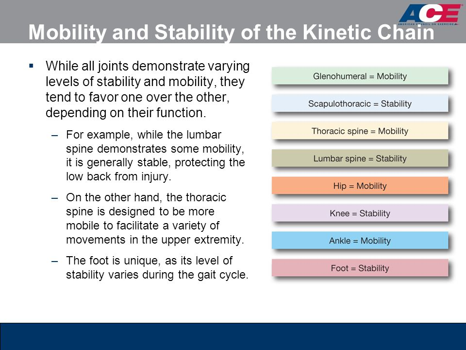 Mobility and Stability of the Kinetic Chain