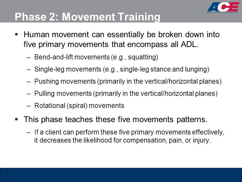 Phase 2: Movement Training
