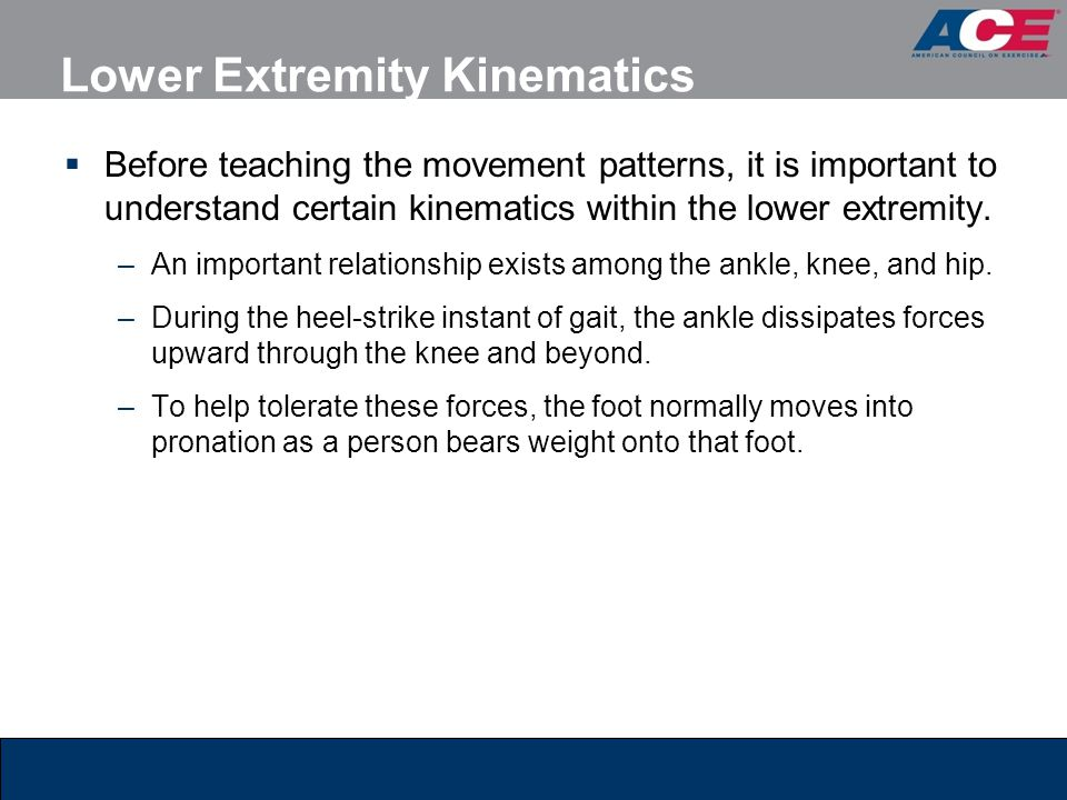 Lower Extremity Kinematics
