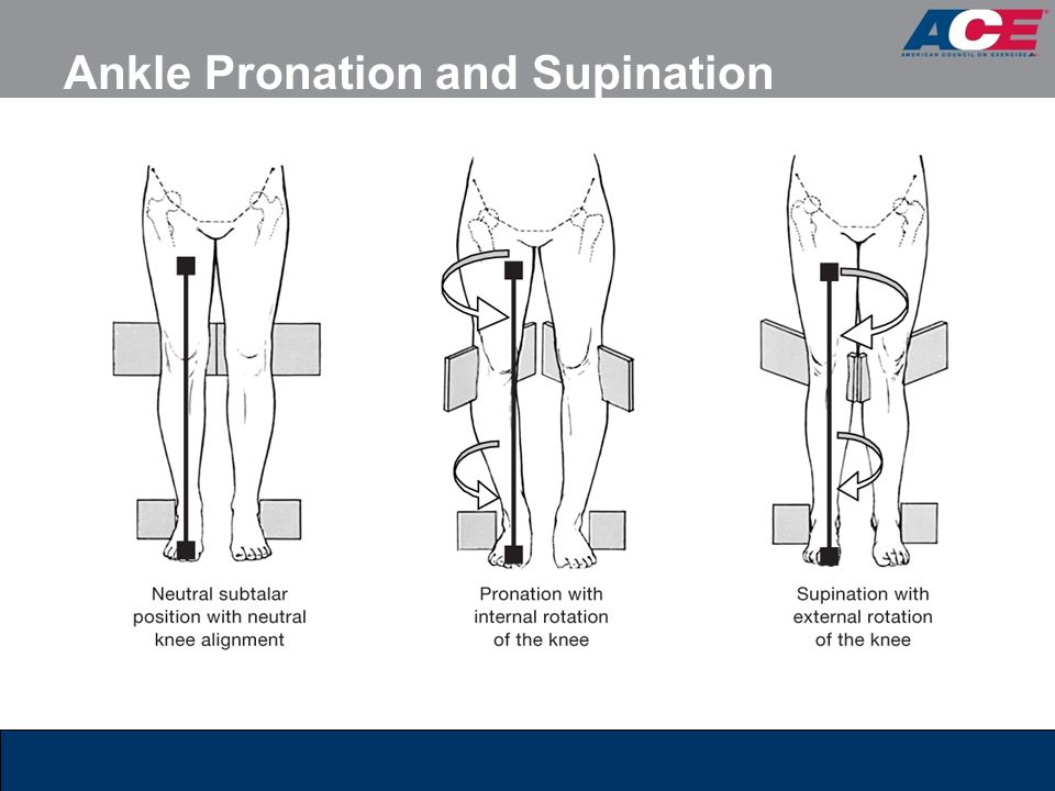 Ankle Pronation and Supination