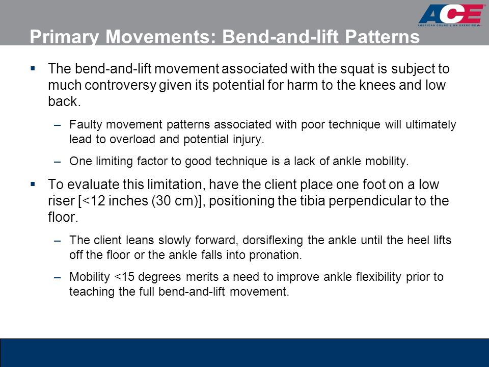 Primary Movements: Bend-and-lift Patterns