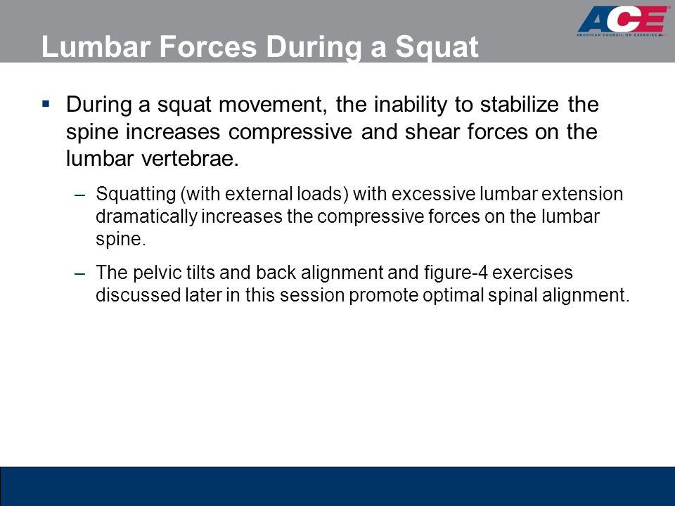 Lumbar Forces During a Squat