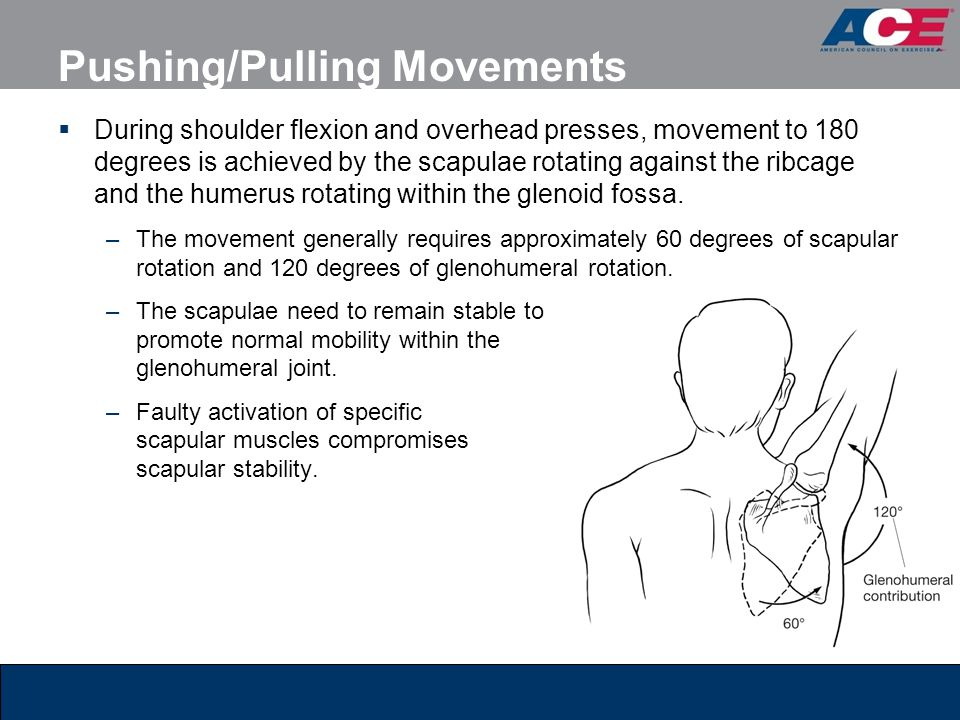 Pushing/Pulling Movements