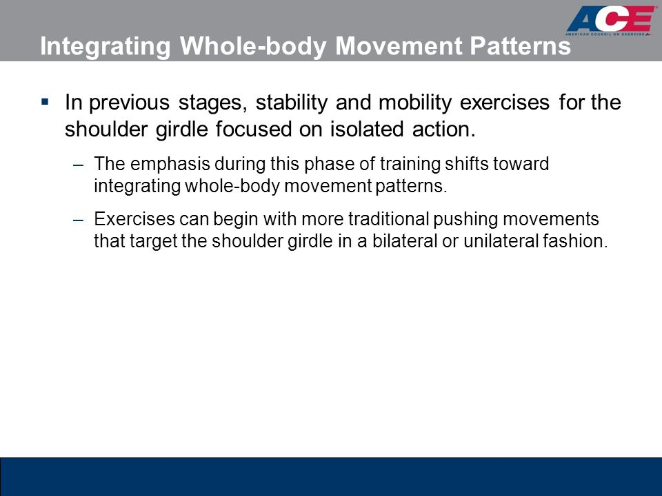 Integrating Whole-body Movement Patterns