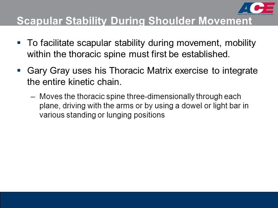 Scapular Stability During Shoulder Movement