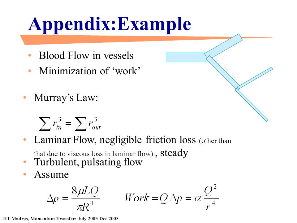 Appendix:Example Blood Flow in vessels Minimization of 'work'