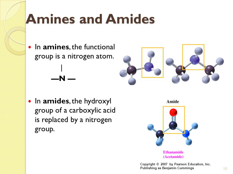 Amines and Amides In amines, the functional group is a nitrogen atom.
