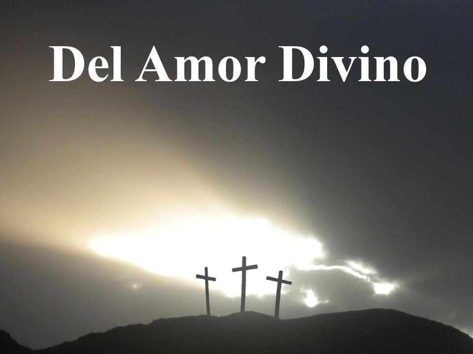 Del Amor Divino