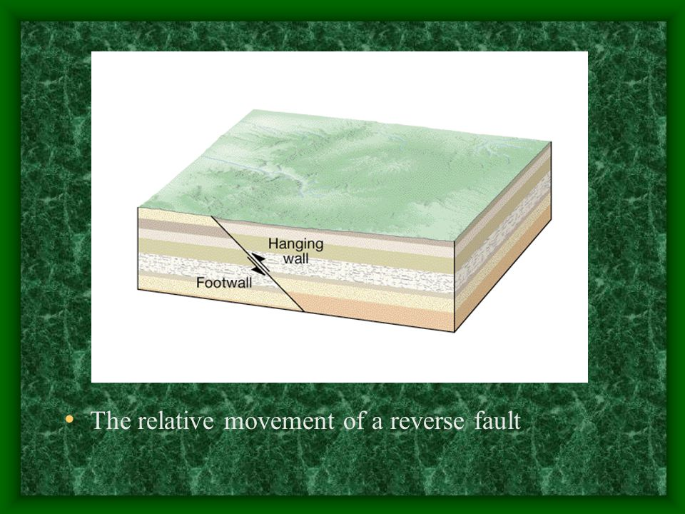 The relative movement of a reverse fault