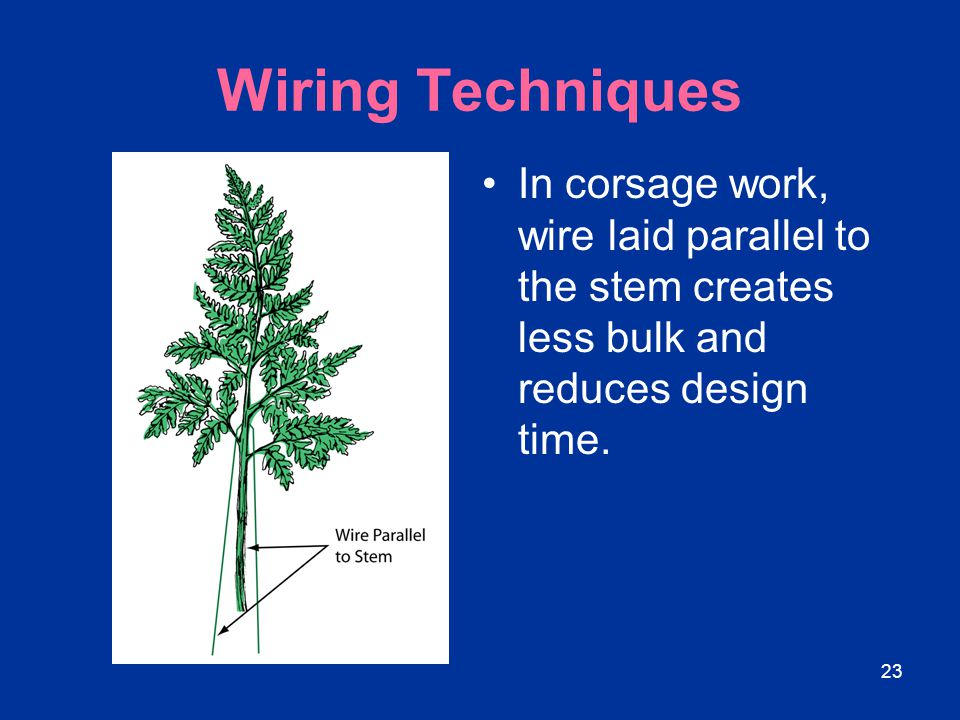 Wiring Techniques In corsage work, wire laid parallel to the stem creates less bulk and reduces design time.