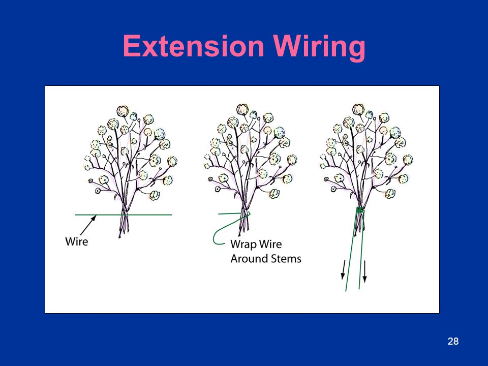 Extension Wiring