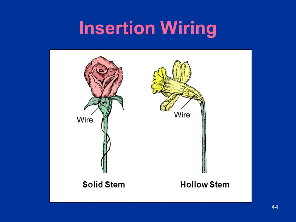 Insertion Wiring Solid Stem Hollow Stem