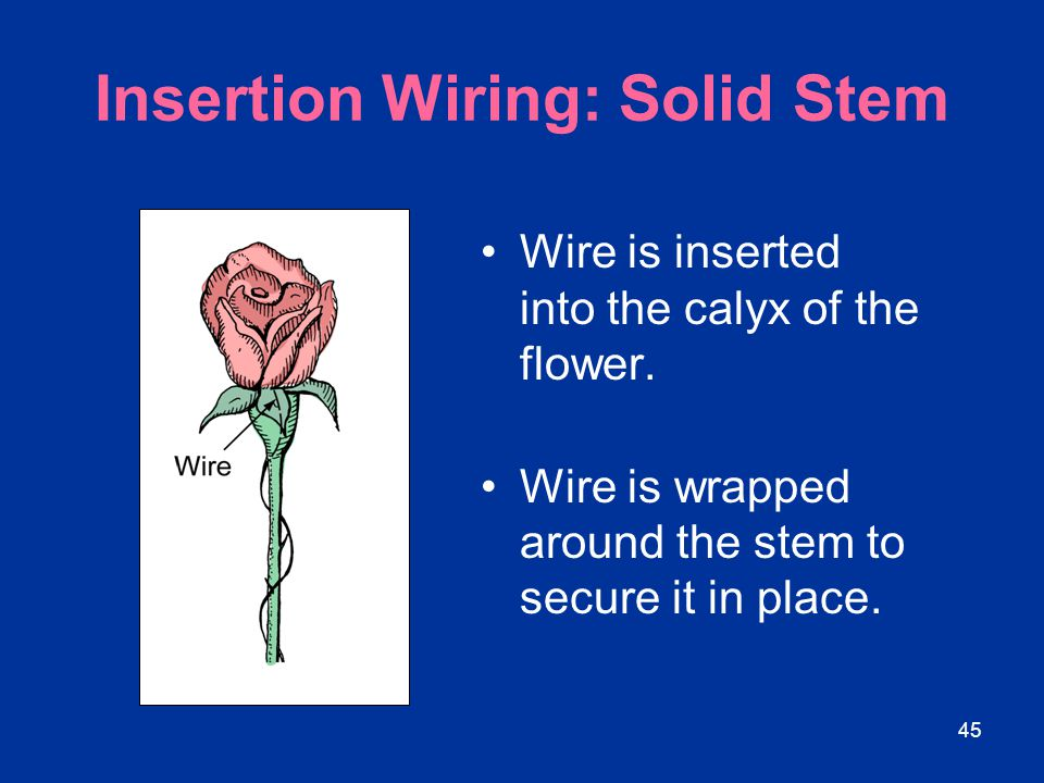Insertion Wiring: Solid Stem