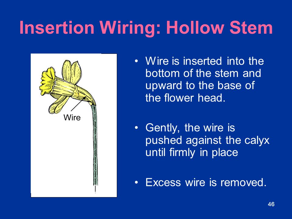 Insertion Wiring: Hollow Stem
