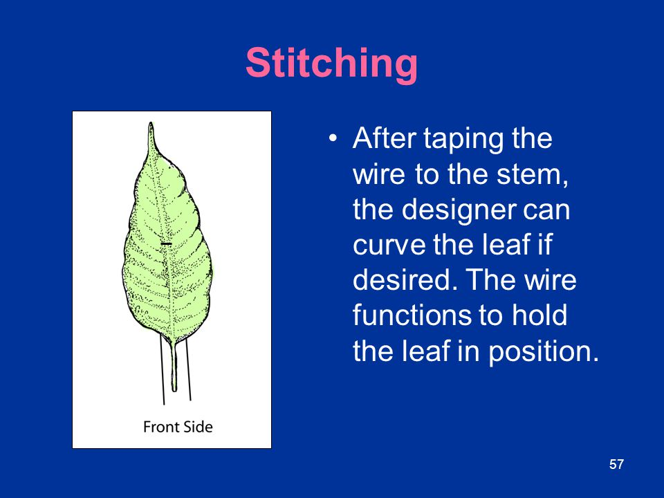 Stitching After taping the wire to the stem, the designer can curve the leaf if desired.
