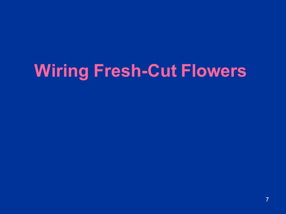 Wiring Fresh-Cut Flowers