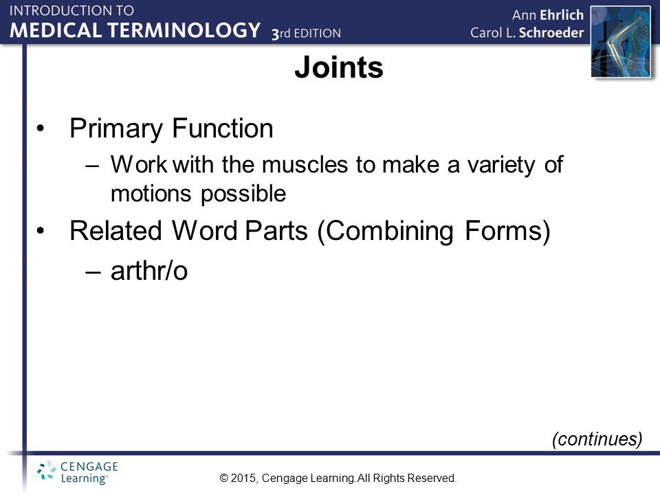 Joints Primary Function Related Word Parts (Combining Forms) arthr/o