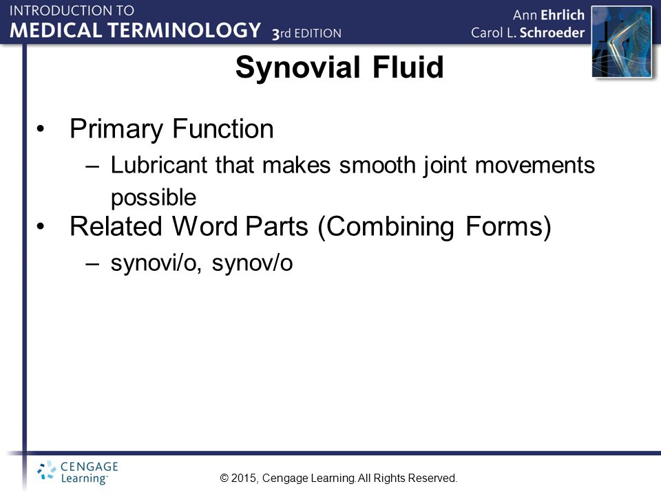 Synovial Fluid Primary Function Related Word Parts (Combining Forms)