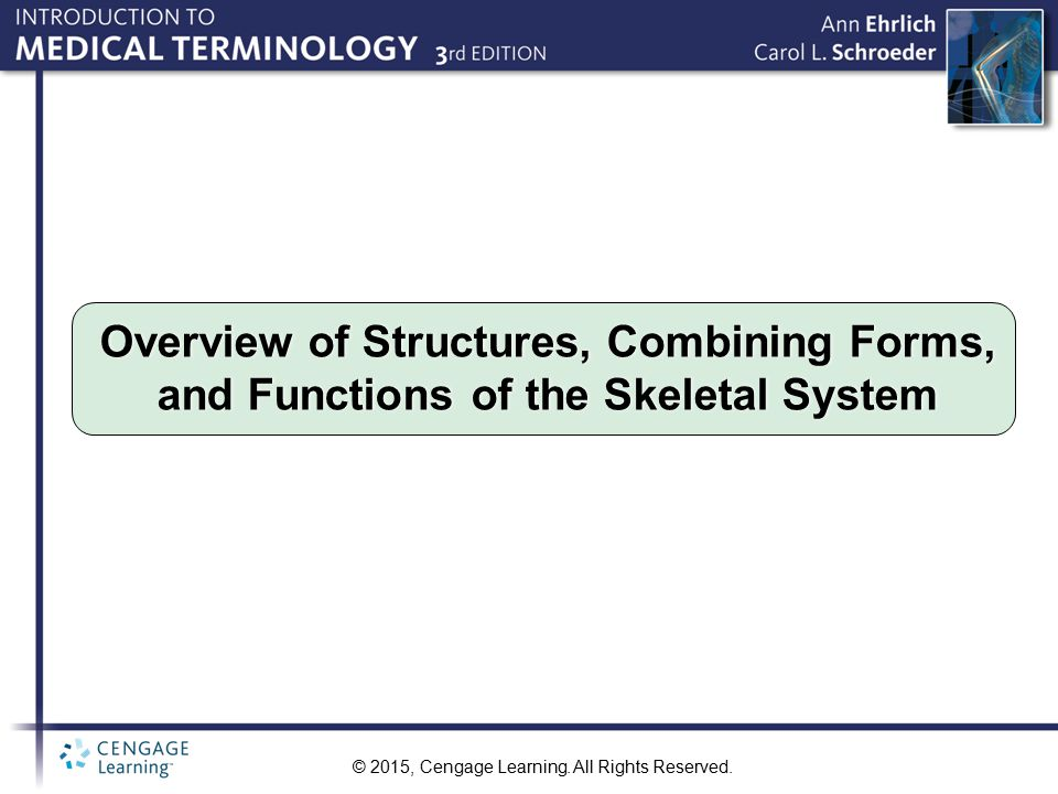 Overview of Structures, Combining Forms, and Functions of the Skeletal System