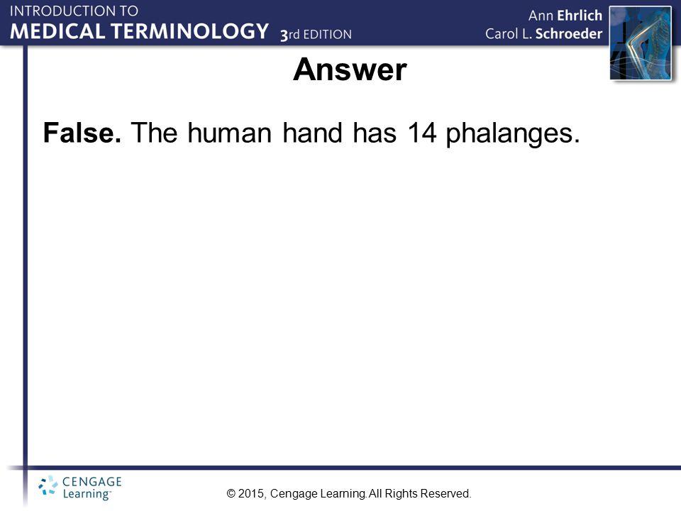 Answer False. The human hand has 14 phalanges.
