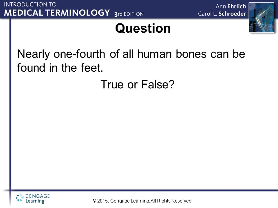 Question Nearly one-fourth of all human bones can be found in the feet. True or False