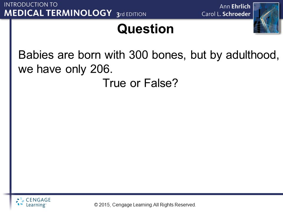 Question Babies are born with 300 bones, but by adulthood, we have only 206. True or False