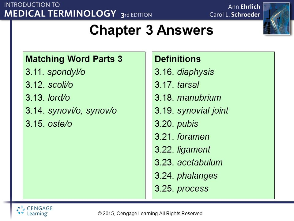 Chapter 3 Answers Matching Word Parts 3 3.11. spondyl/o 3.12. scoli/o