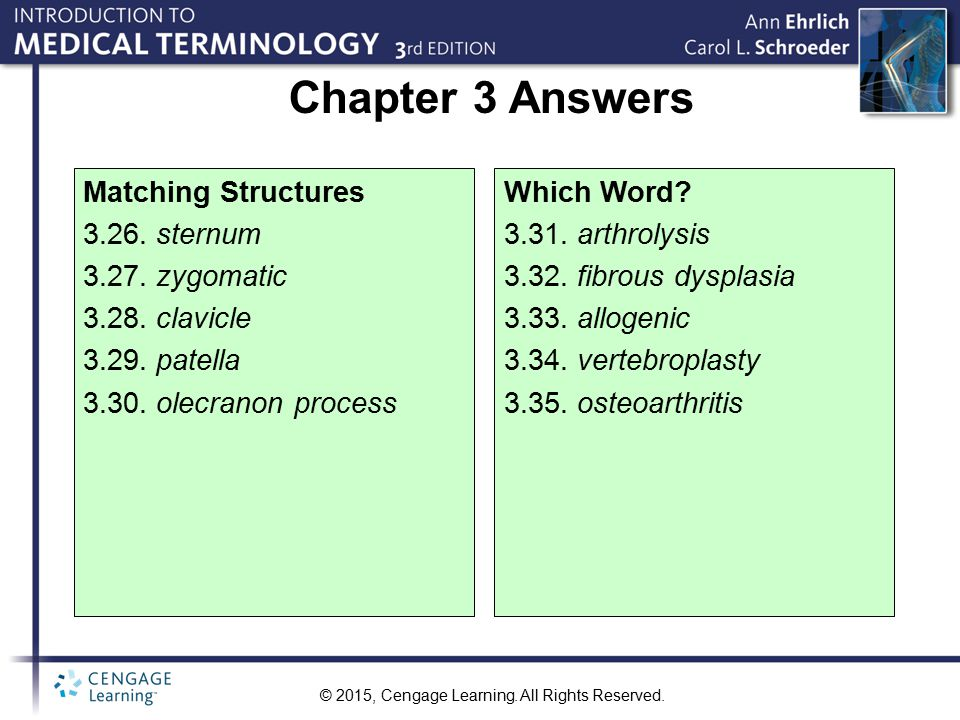 Chapter 3 Answers Matching Structures 3.26. sternum 3.27. zygomatic