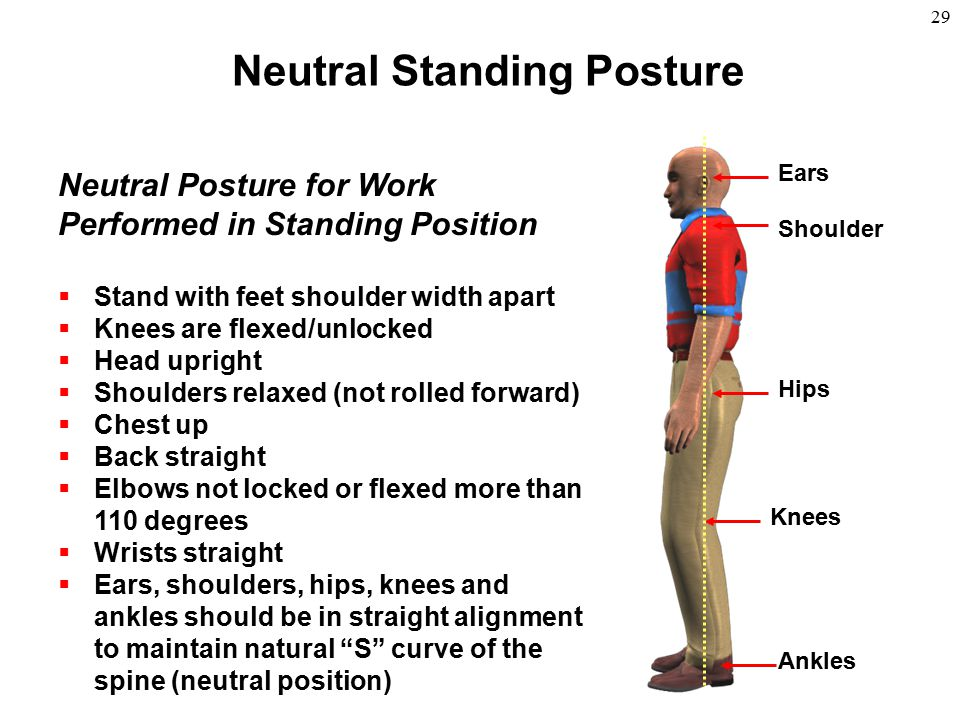 Neutral Standing Posture