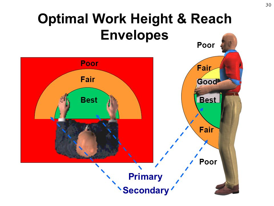 Optimal Work Height & Reach Envelopes