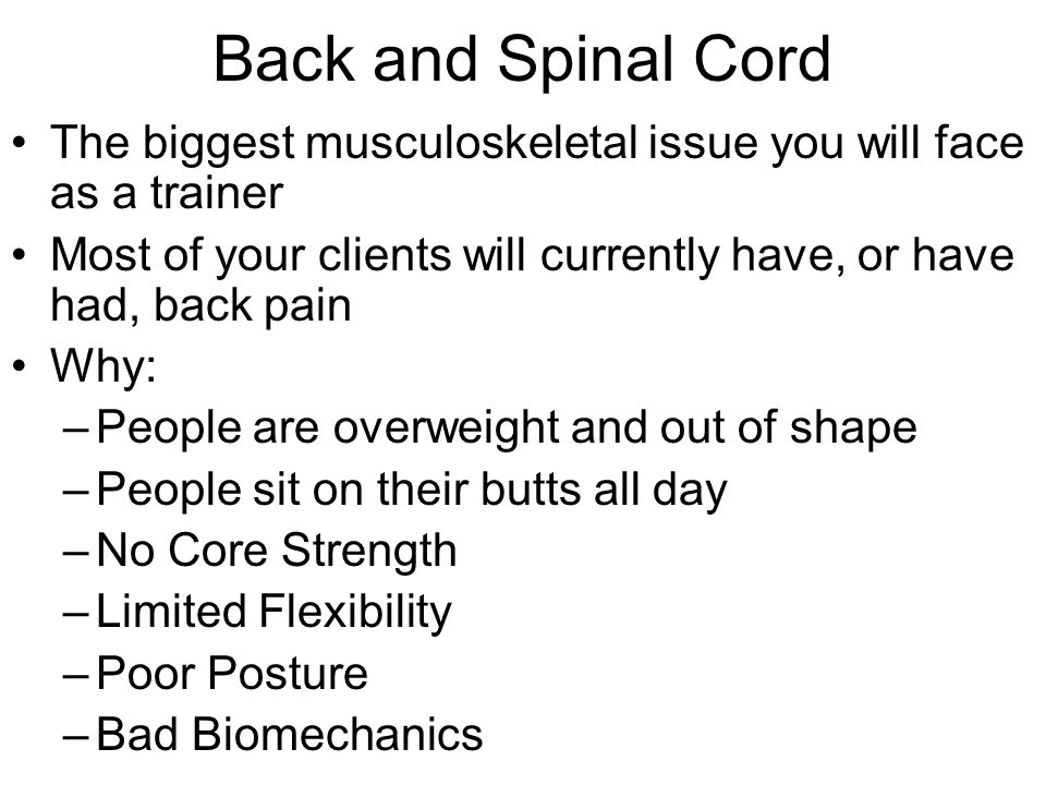Back and Spinal Cord The biggest musculoskeletal issue you will face as a trainer. Most of your clients will currently have, or have had, back pain.