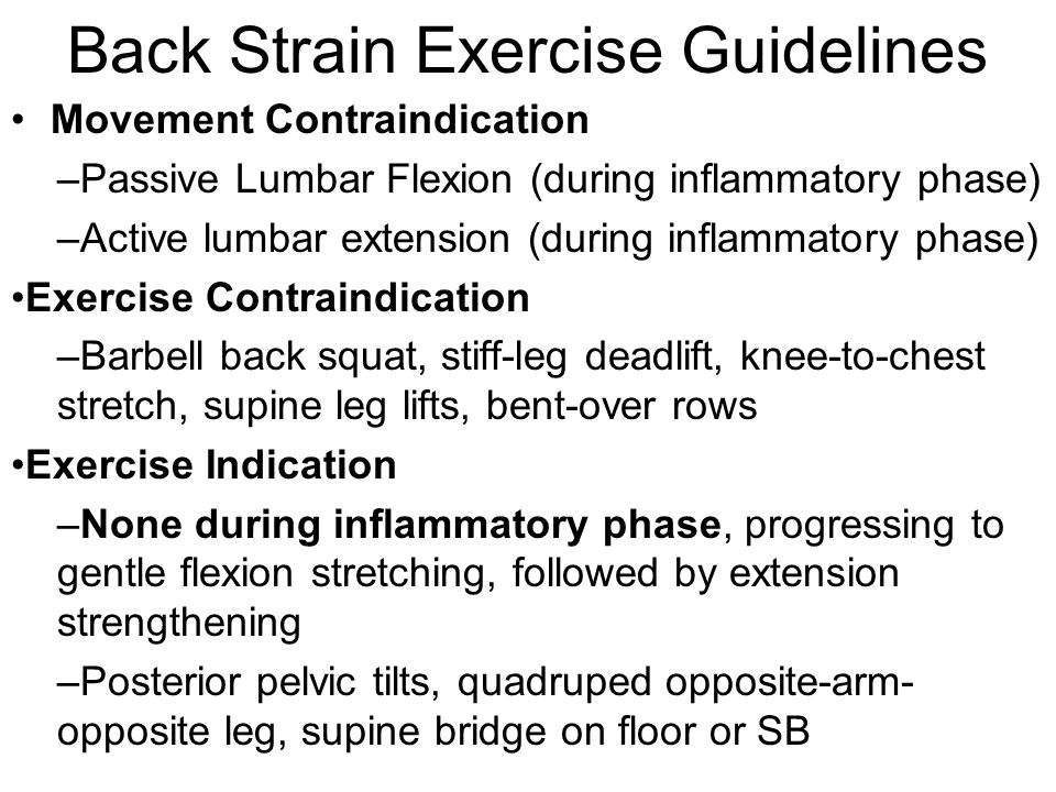 Back Strain Exercise Guidelines