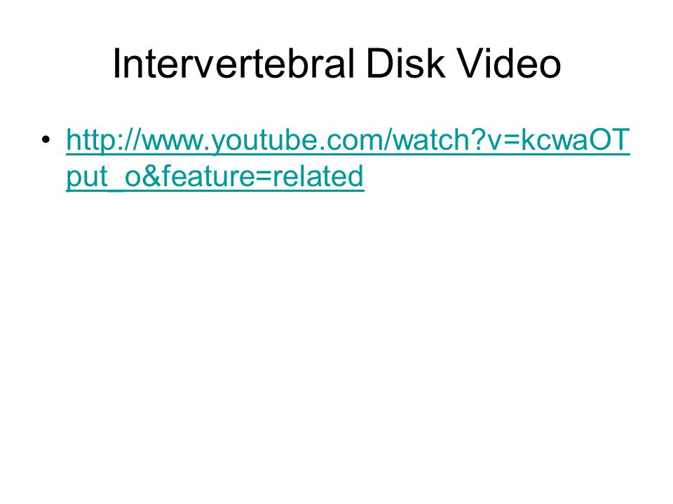 Intervertebral Disk Video