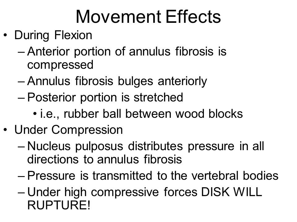Movement Effects During Flexion